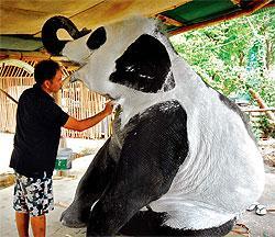 (组图)泰国陷入熊猫热::大象竟被折腾成这样